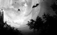 SF u Booksi: Vampirska proza