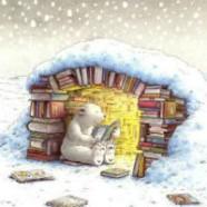 Program SFere u studenom